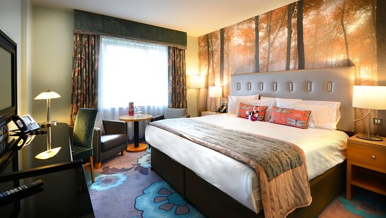 Crowne Plaza Hotel Dublin Airport: Standard King Room
