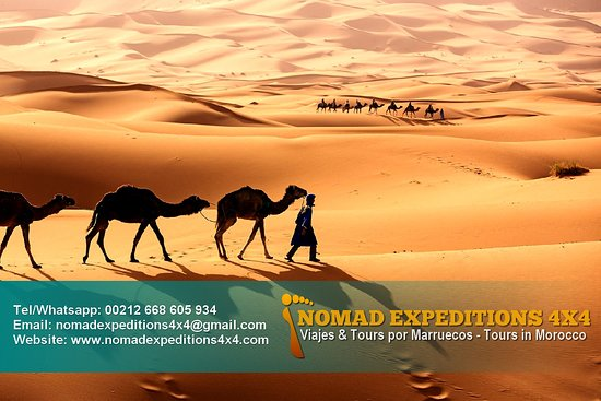 Nomad Expeditions 4x4 Day Tours