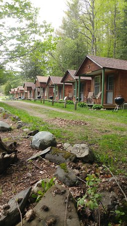 Pine Crest Motel and Cabins Photo