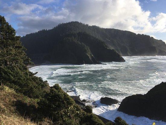 Vida, Орегон: View from The Heceta Head Lighthouse