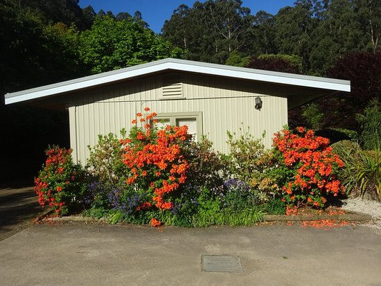 Pirianda Garden: House with spring flowers