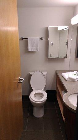 Hotel Alma & Seasonal Residence at the University of Calgary: Washroom.