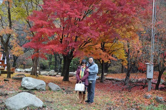 Seoraksan National Park: Gunung seoraksan korea selatan