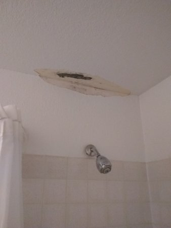 Veradale, WA: Moldy ceiling in shower area