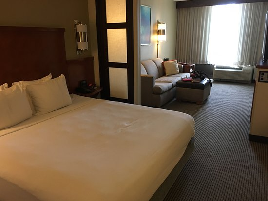 Hyatt Place Dallas/Arlington: view as you enter room
