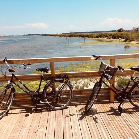 Le Grau-du-Roi, Prancis: Great way to see the Camargue