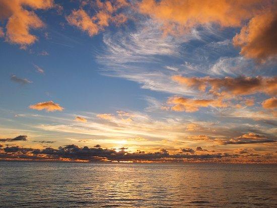 RITC - Rock Island Tour Company - Day Tour in Palau: サンセットディナークルーズ3