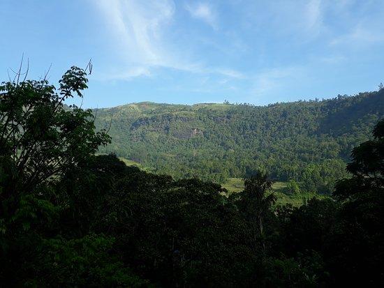 Pundaluoya – fotografia
