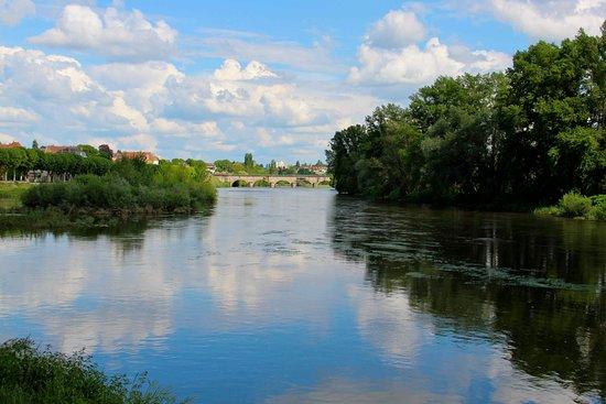 Digoin, France : Pont-aqueduc vu du parc
