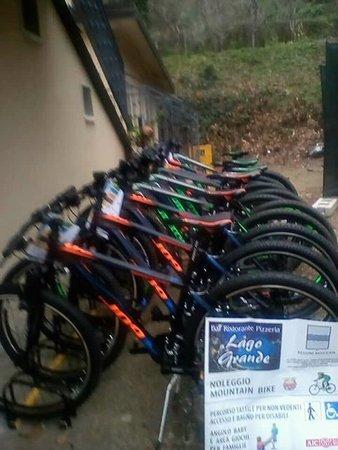 Monticchio Bagni, إيطاليا: Noleggio mountain bike