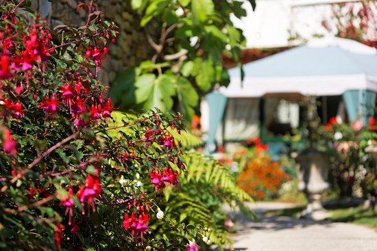 Sainte-Anne-d'Auray صورة فوتوغرافية