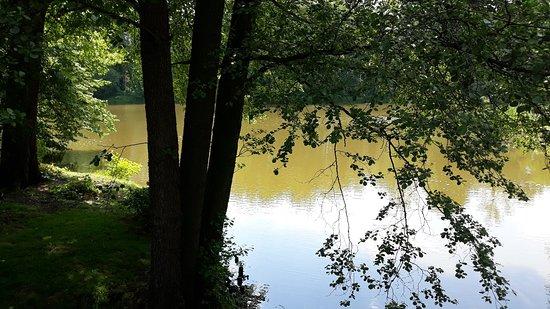 Pszczyna Historic Park: 20180522_144348_large.jpg