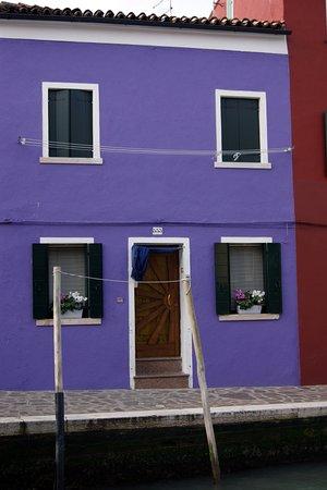 Discover Burano照片