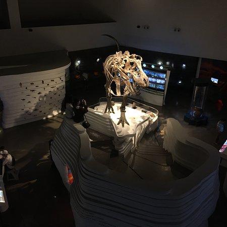 Μουσείο Σκέψης του Ταγκουίγκ Φωτογραφία