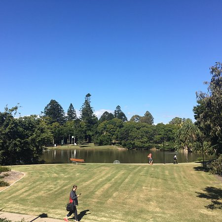 UQ Lakes (Brisbane) - 2019 All You Need to Know BEFORE You