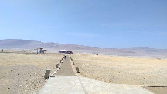 Ica Region, Peru: IMAG8660_large.jpg