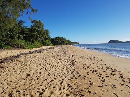 Palm Cove Beach: nice beach