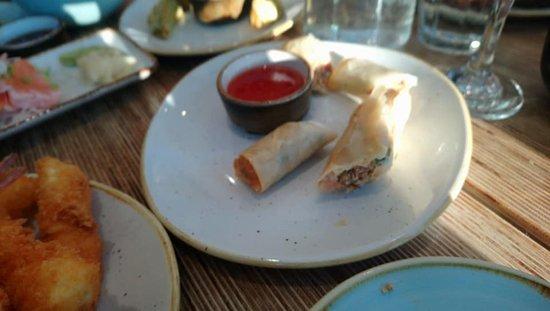 Feng Sushi: Salmon Spring Rolls