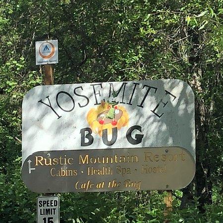 Yosemite Bug Rustic Mountain Resort: photo1.jpg