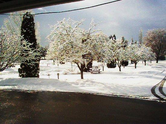 Columbia Falls, Montana: Winter Time LaSalle Park