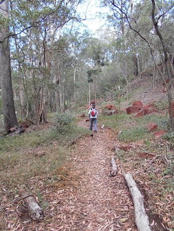 Toowoomba, Australia: On our second visit we found a little side trail we had missed before, lovely.