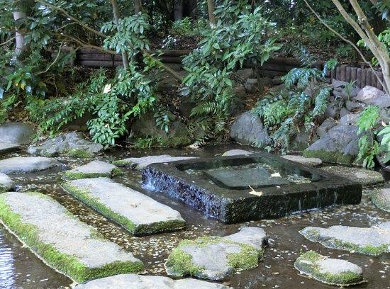 Ochanomizu Pond