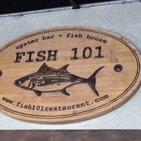 Fish 101 이미지
