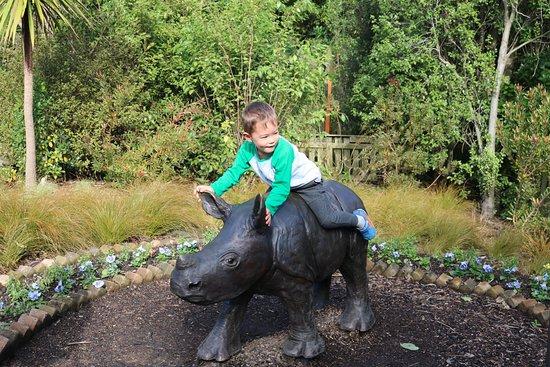 Hamilton Zoo: My grandson sitting on the Rhino