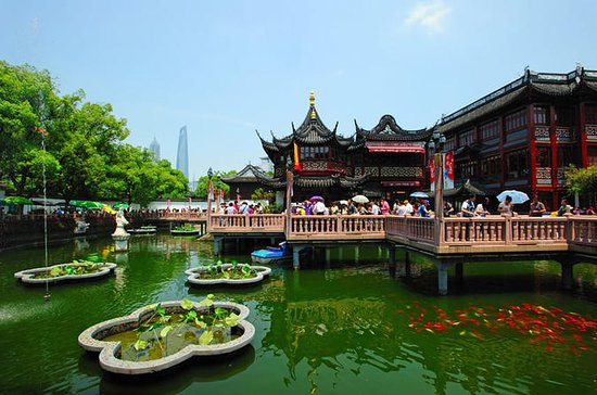 Private Amazing Shanghai City Day ...