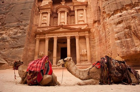 Travel to Petra from Aqaba  The Rose...