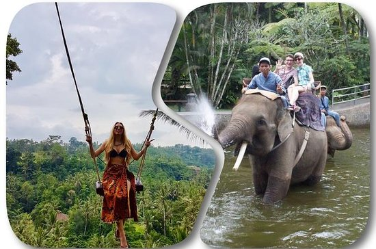 Ayung River Rafting with Bali Swing ...