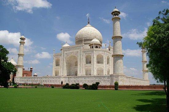 Taj Mahal & Agra Fort full day tour...