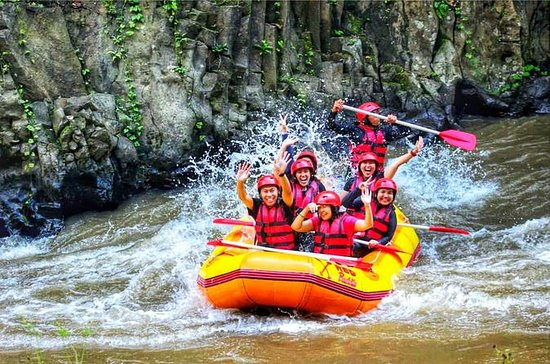 Ubud White Water Rafting With Private...