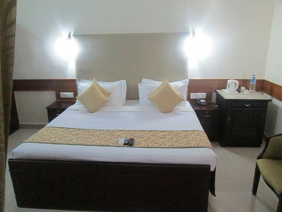 Paray Village County Hotel: Deluxe room