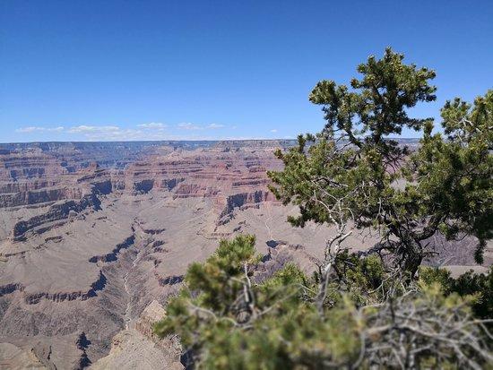 Grand Canyon North Rim Φωτογραφία