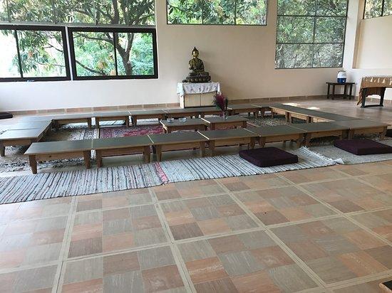 Vedic Yoga Centre: Yoga retreat