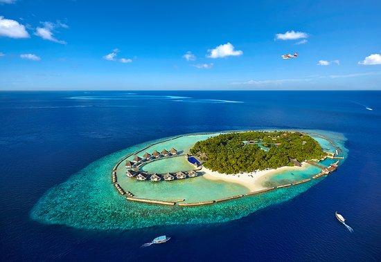 Ellaidhoo Island: Aerial View- Ellaidhoo Maldives by Cinnamon