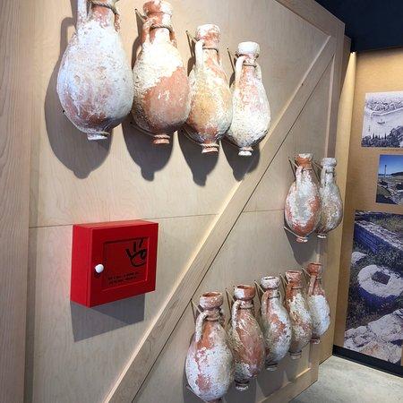 Museum Olei Histriae照片
