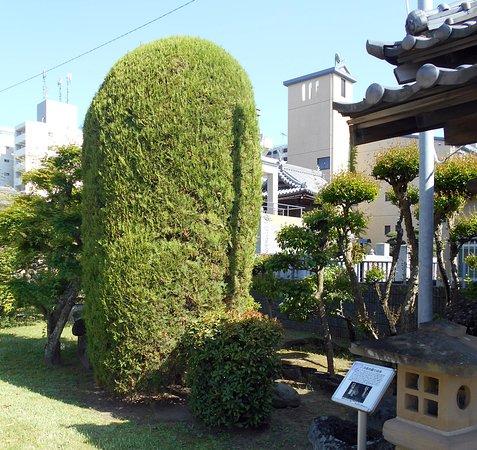 Jodoji Temple: 八兵衛地蔵の隣にあった力作