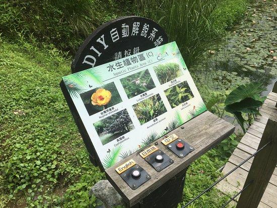 Green World Ecological Farm: 園內植物說明牌子