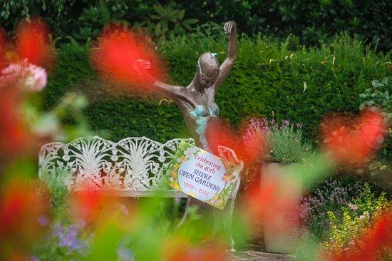 Rookery Nook B&B Shere: Shere Open Gardens