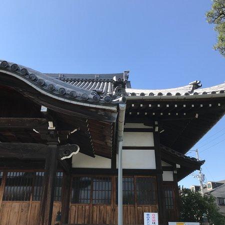 Myoanji Temple: 本堂屋根の造形美