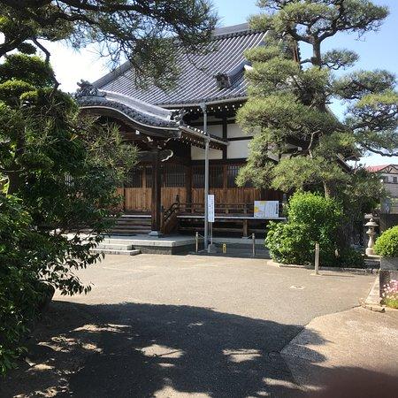 Myoanji Temple: 妙安寺の境内&本堂
