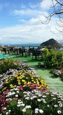 Hotel Lumihe: terrazza panoramica, solarium
