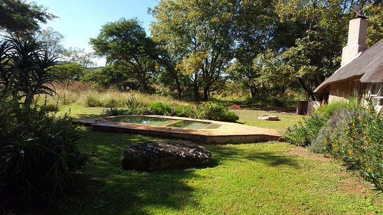 Louis Trichardt, South Africa: Madala's Cottage - pool looking east.