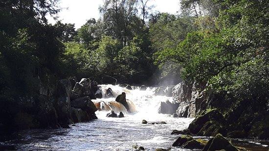 Around Bankfoot: Waterfalls at The Hermitage woodland walk.