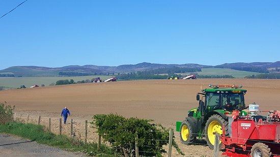 Around Bankfoot: rolling fields around the village.