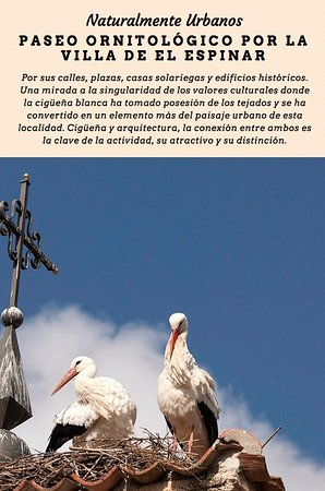 Colectivo Azalvaro