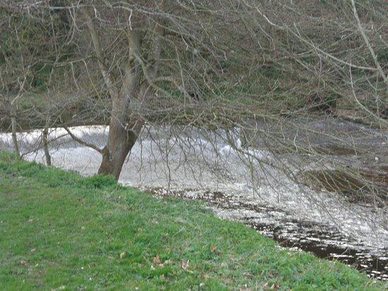 Jedburgh Abbey: River