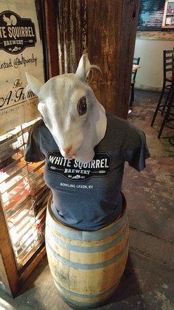 White Squirrel Brewery: Everything White Squirrel